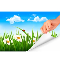 Spring background with sky flowers grass and a vector image