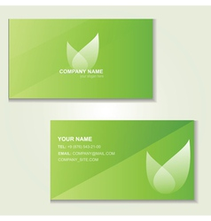 Design of green visited card vector image vector image
