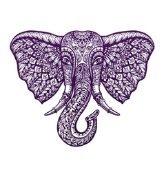 Hand drawn front view head elephant with ornament vector