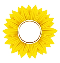 Round banner with yellow sunflower vector