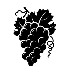 Grapes branch icon vector