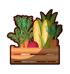Colorful silhouette of wooden box with vegetables vector