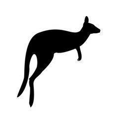 kangaroo the black color icon vector image