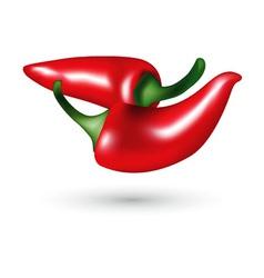 red hot chili peppers vector image