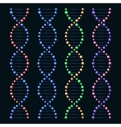 Glossy dna genome molecules set vector