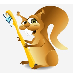 Dental squirrel vector image vector image