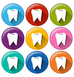 Tooth buttons vector