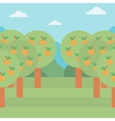 Background of orange trees vector image