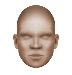 Imaginary human face isolated three-dimensional vector