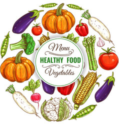 Healthy organic vegetables food banner vector