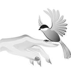 Black and white drawing bird sits on the finder vector image vector image