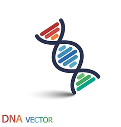 DNA Deoxyribonucleic acid symbol Double strand vector image