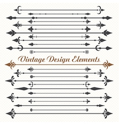 Set of calligraphic design elements vector image