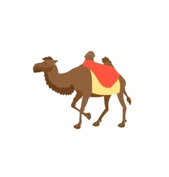 Simple brown two hump arab big camel vector image