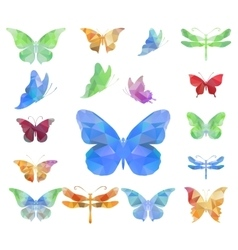 Triangle polygonal butterflies vector image