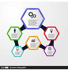 Conceptual design template infographics elements vector