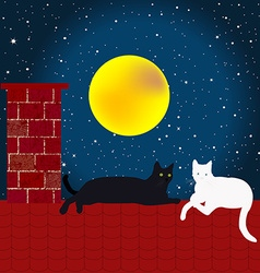 Black and white cats on the roof vector