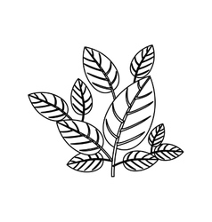 Silhouette ornament leaves with ramifications vector