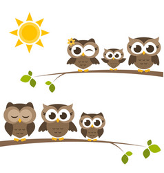 Brown owls and owlets on the tree vector