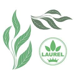 Laurel vector