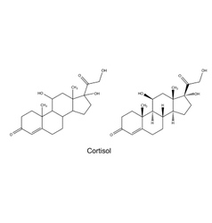 Structural chemical formulas of cortisol vector image vector image