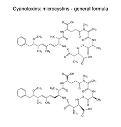 Microcystins - general chemical structural formula vector
