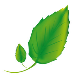 sticker green leaves icon vector image vector image