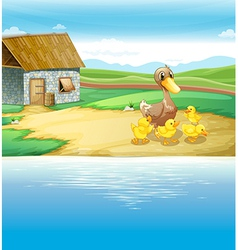 A family of duck near the river vector image