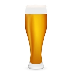 beer on white background vector image