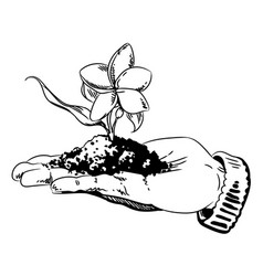 Cartoon image of flower growing in palm of hand vector