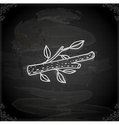Hand drawn branch vector