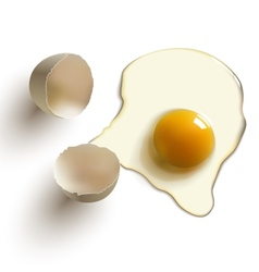 Cracked raw egg vector