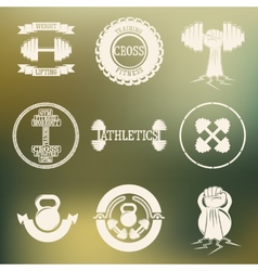 Cross training and gym logo white vector