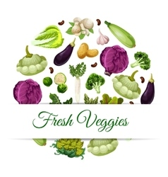 Banner for organic and natural vegetable food vector
