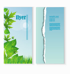 flyer template with fresh green leaves and grass vector image