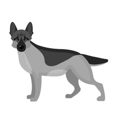 Shepherd single icon in monochrome style dog vector