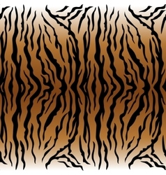 Animal pattern tiger vector