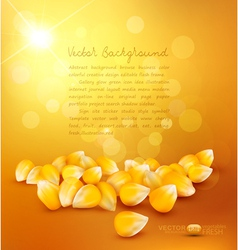 Corn on the gold background vector