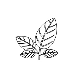 Silhouette ornament leaves with stem vector