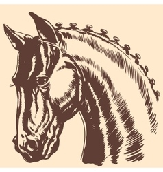 Thoroughbred horse head profile racing exhibition vector