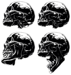 Detailed graphic skull in profile projection set vector