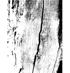 wooden planks distress overlay texture for your vector image vector image