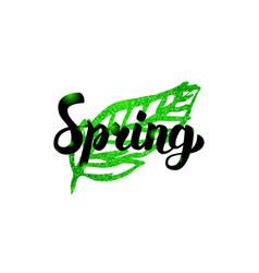 Spring green leaf inscription vector