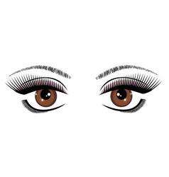 eye brown vector image vector image