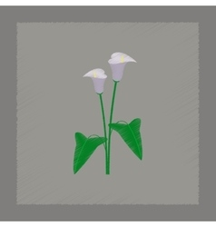 Flat shading style flower calla vector