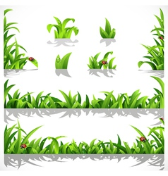 Green lush grass with dew and ladybirds vector