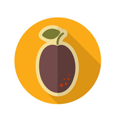 Plum flat icon fruit vector