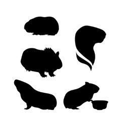 silhouettes of a guinea pig vector image