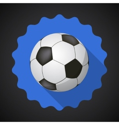 Sport Ball Football Soccer Flat icon background vector image vector image