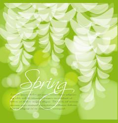 Spring wedding invitation acacia flowers vector